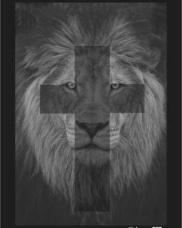 Camiseta Leão de Cristo Infantil